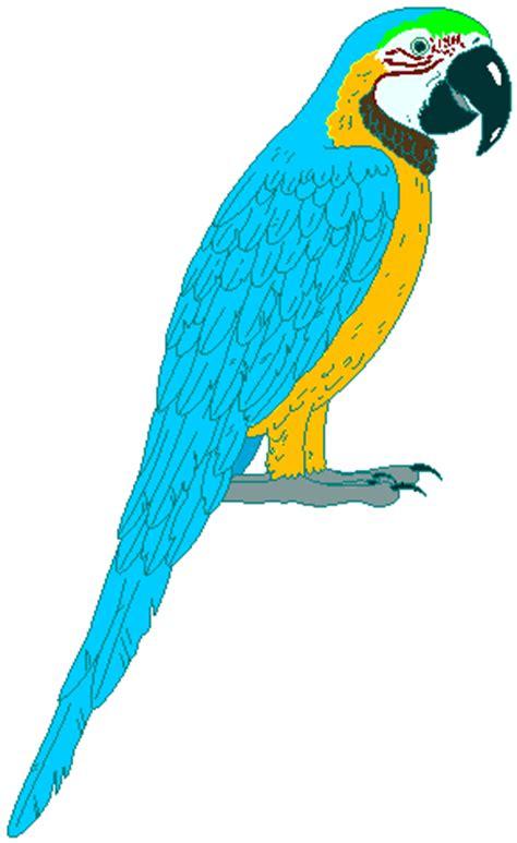 Essay On Bird Hen Free Essays - studymodecom